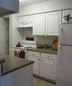 White Cabinetry at Our Luxury North Tampa FL Apartments
