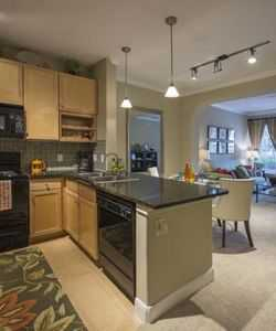 Our Ricefield Village Apartments in Katy Provide Upscale Interior Finishes Including Designer Kitchens