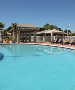 Pet-Friendly St. Petersburg FL Apartments in Pinellas County