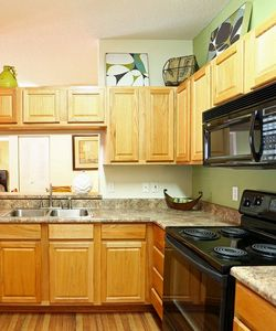Our New Tampa FL Apartment Homes Feature Spacious One Two and Three Bedroom Pet-friendly Floor Plans