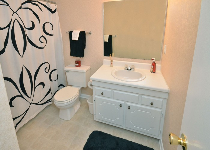 Beautiful Interiors Offered at Windtree Apartment Homes in the Westover Area of Fayetteville, NC