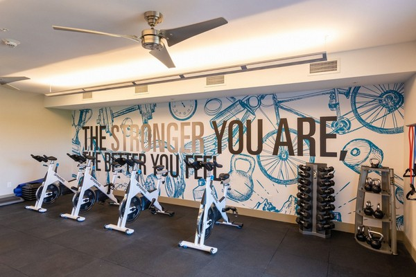 Interior image of cardio fitness equipment