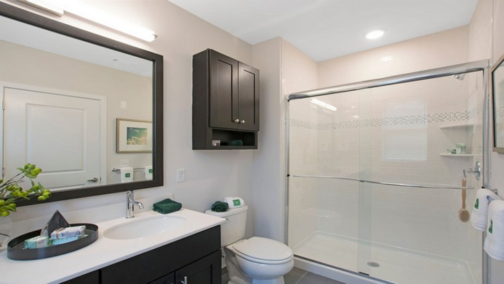 Interior image of bathroom with mirror and vanity sink with walk in shower