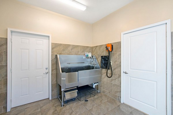 Interior image of pet wash room
