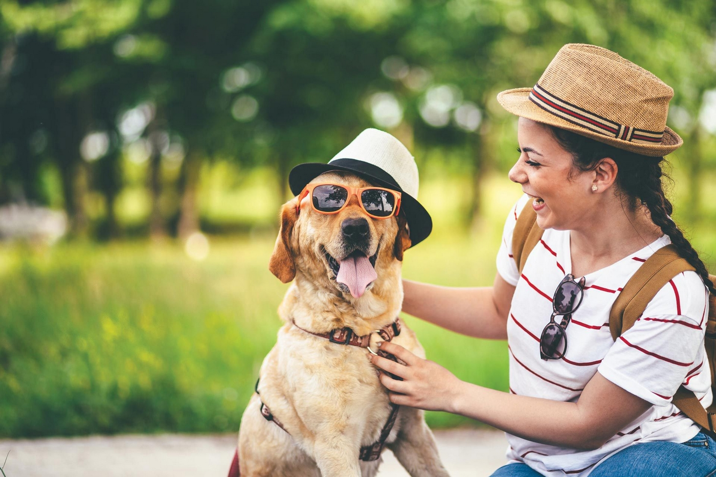 Happy dog with sunglasses and hat