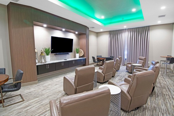 Theater and media room